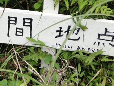 Hachi0625