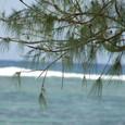 イパンビーチ1