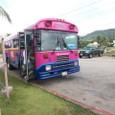 アルパンビーチクラブ バス