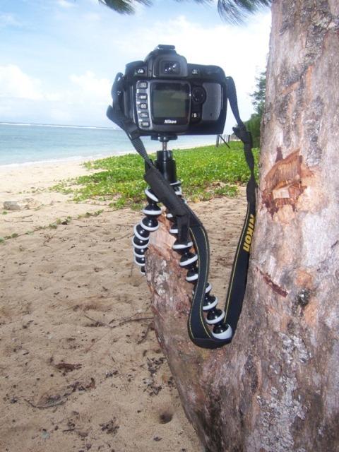 Guam013