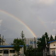台風が去った後の福虹