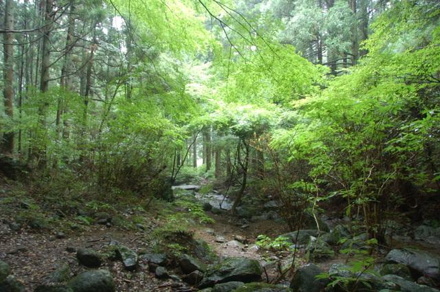 絹の滝への道