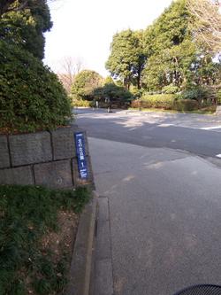 100_2737_1